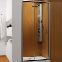 Radaway Premium Plus DWJ 100  Душевая дверь