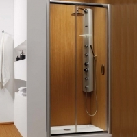 Radaway Premium Plus DWJ 110  Душевая дверь