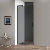 Cezares Slider-B-1-100/110-Grigio-Nero Душевая дверь 100/110 см