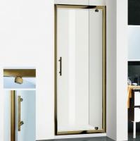 RGW Passage PA-05  Душевая дверь 90 см